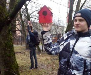 Синичкин день в школах Кировского района
